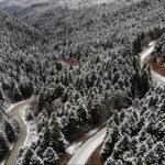 Yedigöller Milli Parkı ulaşıma kapatıldı