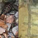 Tunceli'de teröristlerin kullandığı tespit edilen 4 sığınak imha edildi
