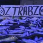 Karadeniz'de gündem hamsi: Av yasağı uzatılsın çağrısı