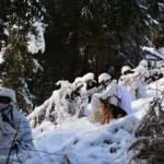 MSB'den zorlu hava ve arazi şartlarında eğitimlerini aralıksız sürdüren Mehmetçik paylaşımı