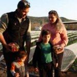Çocukları çilek seviyor diye şehir hayatını bırakıp çiftçiliğe yöneldiler!