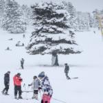 Türkiye'nin dört bir yanında kayak merkezleri doldu!