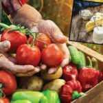 Neden uçtu bu gıda fiyatları? İşte sebepleri ve çözüm önerileri...