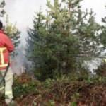 Trabzon'daki orman yangını kontrol altına alındı