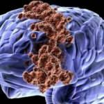 İsrail ile ABD'den kanser ve beyin araştırmalarında RNA haritalama yöntemi