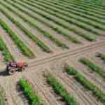 Tarıma yatırım yapacaklara rehber!