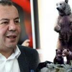 CHP'li Belediye Başkanı ayı heykeli diktiriyor: Sen bize ne demek istiyorsun?