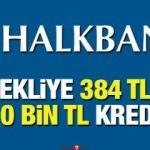 HalkBank 384 TL taksit ile 10 bin TL kredi! Emekli İhtiyaç Kredisi Başvuru şartları...