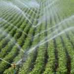 """Tarımsal sulamada """"tasarruf"""" teşvik edilecek"""