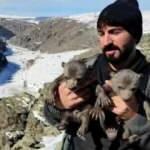 Yavru ayıları mağarada besledi!
