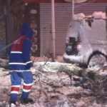 Kağıthane'de yoğun kar nedeniyle yol kenarındaki ağaç devrildi