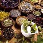 Vatandaşlar soğuk algınlığı ve gribe iyi gelen bitkiler için aktarlara akın etti!