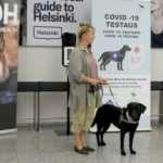 Finlandiya'da köpeklerin yaptığı Covid-19 taramasında şaşırtan sonuç