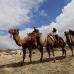 Deve sırtında Kapadokya keşfi!