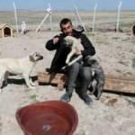 Aksaray'da engelli genç köpekleriyle köyünden kovuldu!