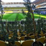 Fenerbahçe Stadı'nda şaşırtan görüntü!