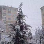 Görüntüler Ankara'dan! Bu sabah beyaza büründü