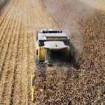 Tarım-ÜFE şubatta arttı