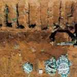Brezilya'da bir günde Covid-19'dan 3 bin 769 kişi hayatını kaybetti
