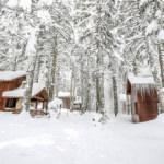 Koronavirüsün izole tatil adresi: Orman Köşkleri
