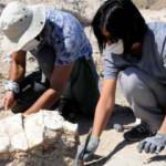 7,5 milyon yıllık fosil Kayseri'de sergilenecek