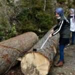 Kadın ormancılar erkeklere taş çıkartıyor