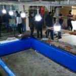 Polisten kaçamadılar! Horoz dövüştüren 20 kişiye para cezası