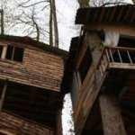Rizeli marangozun pandemi sığınağı