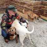 Şile'de köpek çalan iki sanığa 5 yıl 2 ay 15 gün hapis cezası