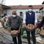 TMO, Salihli'de 160 ton patates alımı yaptı