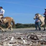 Aydın'da atlı safarili turizm