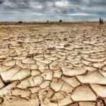 Somali'deki kuraklık binlerce kişiyi göç etmeye zorluyor