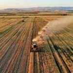 Organik üretim ve tüketimi, sağlanan desteklerle artıyor