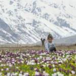 Tunceli'nin ovaları kardelen, nergis ve düğün çiçekleriyle rengarenk oldu!