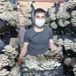 Arkadaşının tavsiyesiyle başladı! Şırnak'ta yılda 16 ton üretecek