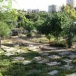 İsrail'den büyük saygısızlık: Osmanlı mezarı üzerine inşa ediyorlar