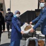 Samsun'da çiftçilere 60 bin çilek fidesi dağıtıldı