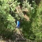 Traktör uçuruma yuvarlandı; 15 yaşındaki sürücü öldü