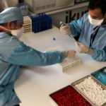 Yerli aşıda çok kritik 'mutasyon' detayı! Bakan Varank açıkladı