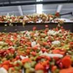 Türkiye 4 ayda 88 milyon dolarlık turşu ihraç etti