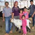 Yılda 6 ayrı yer değiştiren çobanlar, göç hazırlığına başladı
