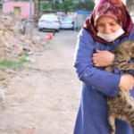 Çocukları vefat eden Fatma teyze, 35 kediye bakıyor