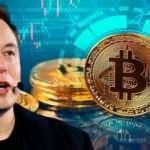 Elon Musk bir tweet attı, Bitcoin çakıldı
