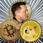 Elon Musk, Bitcoin'den rekor gelir elde etti