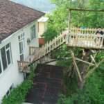 Torunu ağaç ev isteyince kolları sıvadı