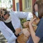 Ücretsiz aşı kampanyası yoğun ilgi gördü