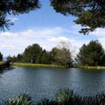 Tabiat harikası Limni Gölü'nde görsel şölen