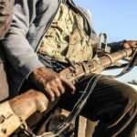50 Boko Haram üyesi etkisiz hale getirildi