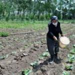 Eşine destek olmak için başladı, köylü kadınlara örnek oluyor