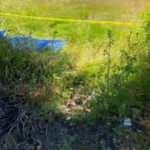 31 yaşındaki kayıp gencin cansız bedeni yol kenarında bulundu
